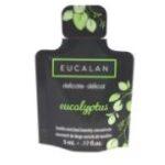 Eucalyptus 5 ml
